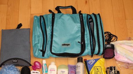 ebag Toiletry Bag