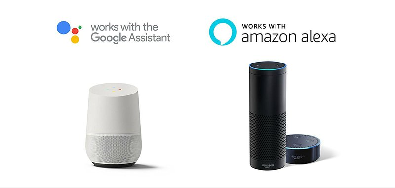 Alexa and Google Home