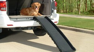 Dog ramp for car and truck